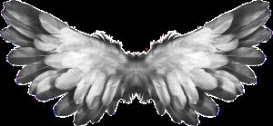 angel-1184180_640