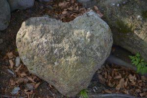 heart-1347549_640
